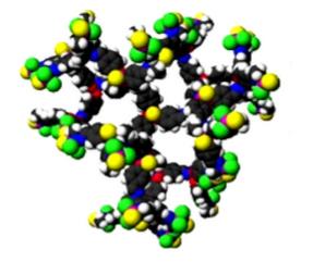 Fig.1: Molecular modeling of phosphorous dendrimer G4